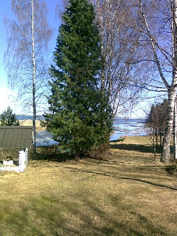 Mika Nyyssölä Blog Archive Naapurit Vihata vai