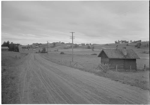 Kakunvaara Värtsilästä käsin nähtynä. Vasemmalla tie, oikealla kolmiomittausmerkit.Värtsilä 1943.08.08. Kuva: SA-kuva.