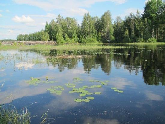 Lapsuuden uintipaikan maisema Utrassa on muuttunut vuosikymmenten saatossa. Kuva vuodelta 2012.