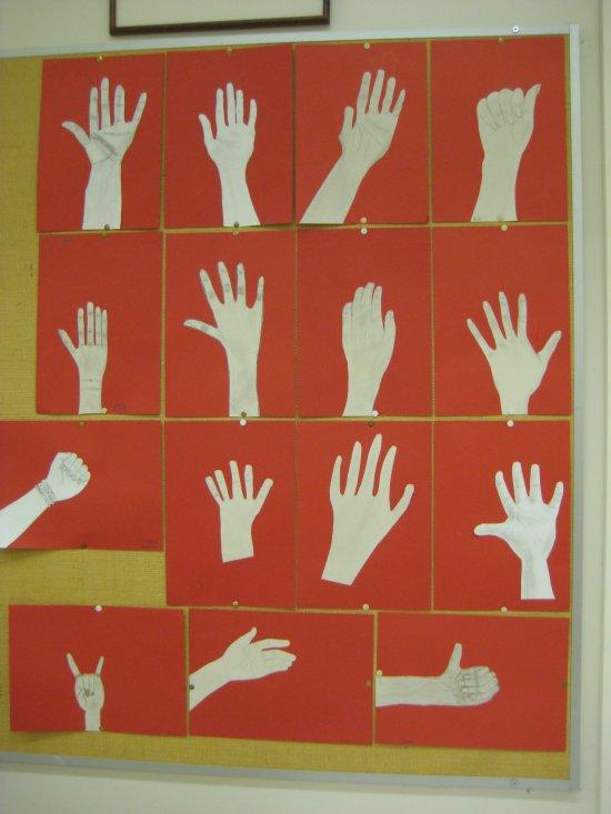 Oma käsi (5-6 luokka)