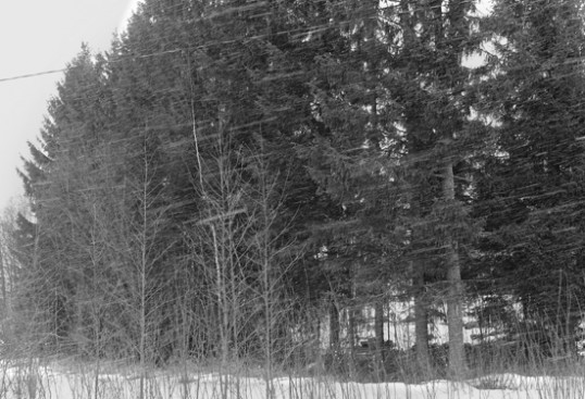 Räntä lentää melkein vaakaa suoraan. On vain yllättävän hankala kuvata niin, ettei kamera kastu ja ettei tuuli vie sateensuojaa mennessään. Kuva: Alpo R.
