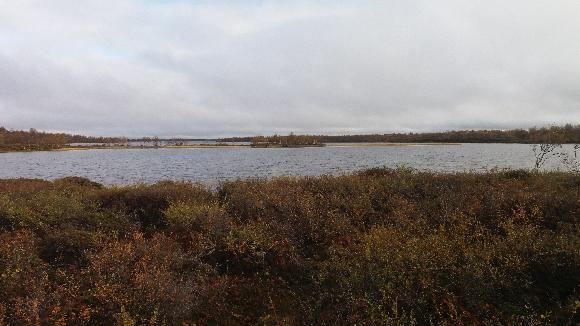 sen koommin mittaamatta on järvi inarin