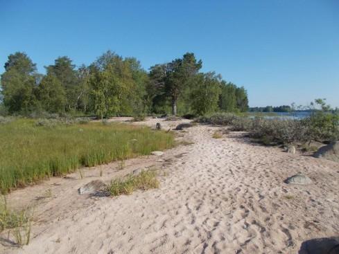 Jänissaaren hiekkaniemi
