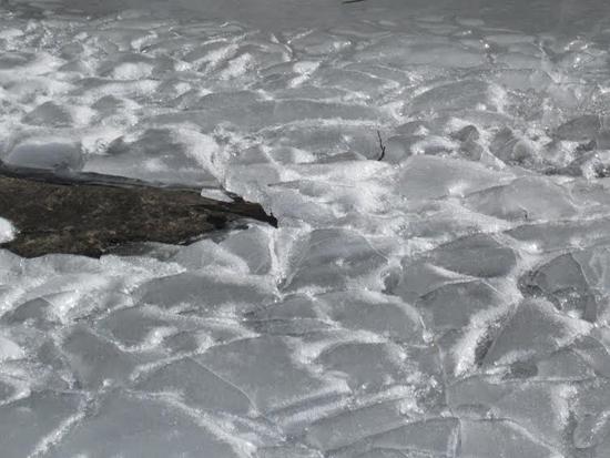 Kaustajärven rannikon huhtikuista kelirikkoa.