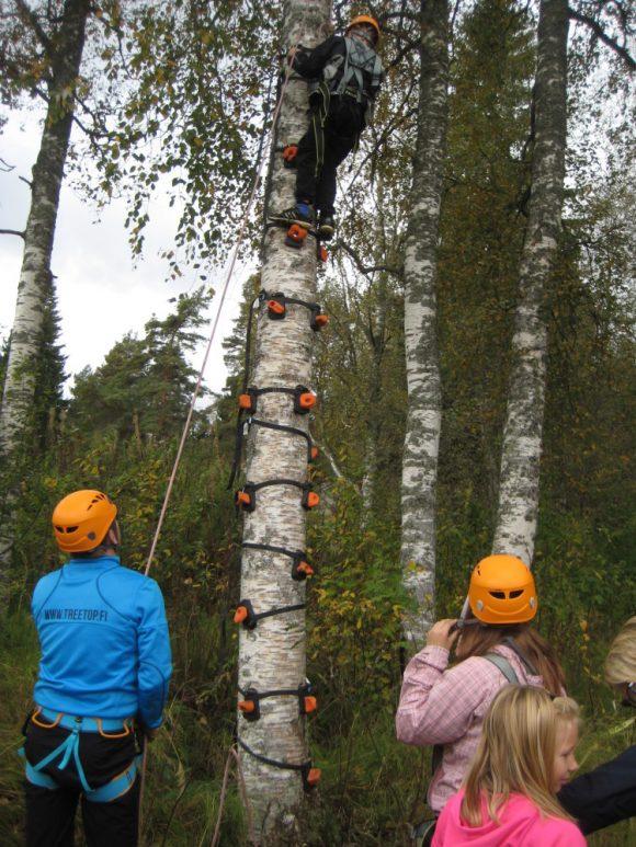 turvallista-puuhun-kiipeilya
